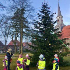 Ein Weihnachtsbaum für Schenefeld